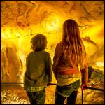 Grotte Chauvet 2 à Vallon Pont d'Arc - Ardèche 07